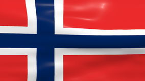 Waving Norway Flag stock video