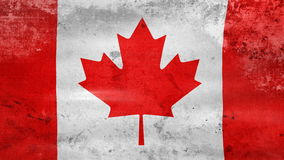 Waving old Canada Flag, ready for seamless loop stock video