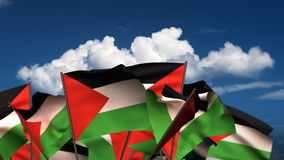 Waving Palestinian Flags stock video