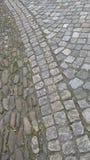 Waving pavement Stock Photography