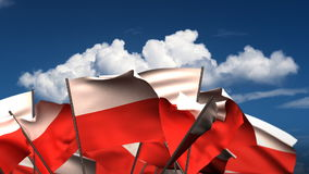Waving Polish Flags stock video