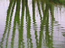 Waving reflection Stock Photos