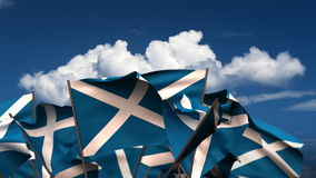 Waving Scottish Flags stock footage