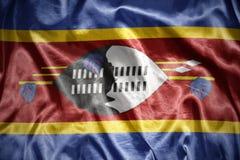 Shining swaziland flag Stock Images