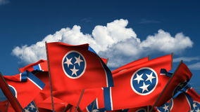 Waving Tennessee State Flags stock video