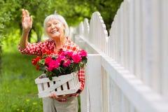 Beaming elderly lady waving to her neighbor standing near fence. Waving to neighbor. Beaming beautiful elderly lady waving to her neighbor standing near fence royalty free stock image