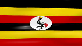 Waving Uganda Flag, ready for seamless loop stock video footage
