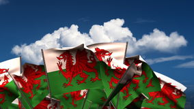 Waving Welsh Flags stock video