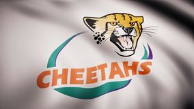 Waving in the wind flag with the symbol of the Rugby team the Central Cheetahs. Sports concept. Editorial use only.  royalty free illustration