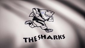 Waving in the wind flag with the symbol of the Rugby team the Sharks. Sports concept. Editorial use only.  vector illustration