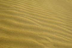 Wavs in the sand Royalty Free Stock Images