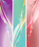 Wavy banner Royalty Free Stock Photos