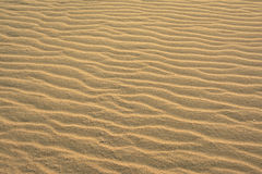 Wavy beach sand background Royalty Free Stock Images