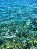 Wavy Blue. Photo was taken in Karpas, Turkish republic of Northern Cyprus Stock Photos