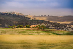 Wavy fields in Tuscany Stock Photos