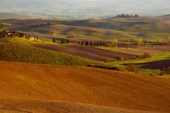Wavy fields in Tuscany Stock Photos