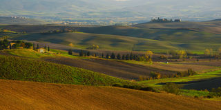 Wavy fields in Tuscany Royalty Free Stock Photo