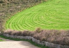 Wavy green golf field. With a wooden fence Royalty Free Stock Photo