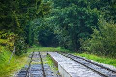 Wavy log railway tracks in wet green forest with fresh meadows. In slovakia Orava stock photos