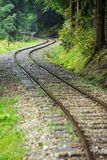 Wavy log railway tracks in wet green forest with fresh meadows. In slovakia Orava royalty free stock images