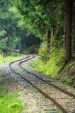 Wavy log railway tracks in wet green forest with fresh meadows. In slovakia Orava stock photography