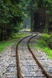 Wavy log railway tracks in wet green forest with fresh meadows. In slovakia Orava stock images