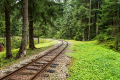 Wavy log railway tracks in wet green forest with fresh meadows. In slovakia Orava stock image