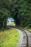 Wavy log railway tracks in wet green forest with fresh meadows. In slovakia Orava royalty free stock photo