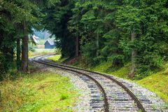 Wavy log railway tracks in wet green forest with fresh meadows. In slovakia Orava royalty free stock photos