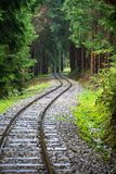 Wavy log railway tracks in wet green forest with fresh meadows. In slovakia Orava royalty free stock photography