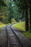 Wavy log railway tracks in wet green forest with fresh meadows. In slovakia Orava stock photo
