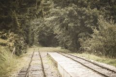 Wavy log railway tracks in wet green forest with fresh meadows - vintage retro look. Wavy log railway tracks in wet green forest with fresh meadows in slovakia stock photos