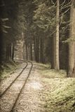 Wavy log railway tracks in wet green forest with fresh meadows - vintage retro look. Wavy log railway tracks in wet green forest with fresh meadows in slovakia royalty free stock photo