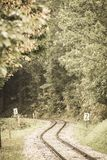 Wavy log railway tracks in wet green forest with fresh meadows - vintage retro look. Wavy log railway tracks in wet green forest with fresh meadows in slovakia royalty free stock photography