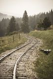 Wavy log railway tracks in wet green forest with fresh meadows - vintage retro look. Wavy log railway tracks in wet green forest with fresh meadows in slovakia royalty free stock photos