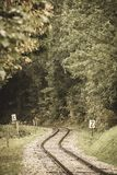 Wavy log railway tracks in wet green forest with fresh meadows - vintage retro look. Wavy log railway tracks in wet green forest with fresh meadows in slovakia royalty free stock images