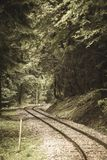 Wavy log railway tracks in wet green forest with fresh meadows - vintage retro look. Wavy log railway tracks in wet green forest with fresh meadows in slovakia stock photo