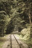 Wavy log railway tracks in wet green forest with fresh meadows - vintage retro look. Wavy log railway tracks in wet green forest with fresh meadows in slovakia stock image