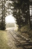 Wavy log railway tracks in wet green forest with fresh meadows - vintage retro look. Wavy log railway tracks in wet green forest with fresh meadows in slovakia stock images