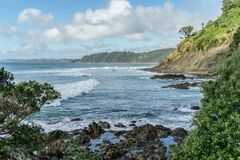 Wavy ocean with rocky coast on cloudy day, Leigh beach, New Zealand royalty free stock images