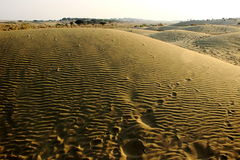 Wavy Pattern on Sand Dune Royalty Free Stock Photos