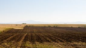 Wavy ploughed fields Royalty Free Stock Photo