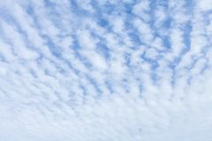 Wavy, porous curly clouds on the blue sky. Nature background Royalty Free Stock Photos