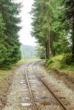Wavy railroad tracks in wet summer day in forest. With green meadow on horizon Royalty Free Stock Image