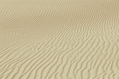 Wavy rippled desert or beach sand texture and background Royalty Free Stock Images