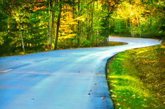 Wavy road in the woods Stock Photo