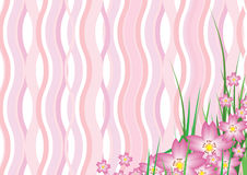 Wavy Sakura Blossom Royalty Free Stock Photography