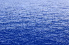 Wavy sea surface Royalty Free Stock Photo