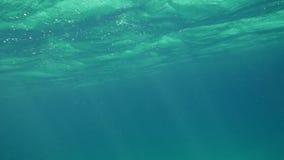 Wavy Sea Surface Underwater stock video footage