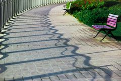 Wavy Shadows and A Bench In the park stock photos